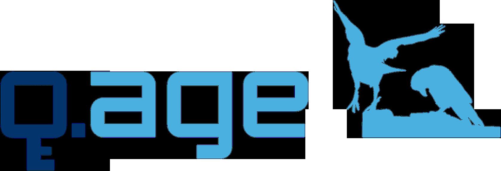 Q.Age Logo